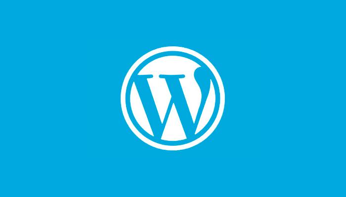 Wat is een WordPress website?